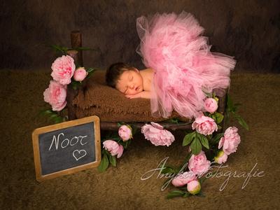 Baby fotoshoot met bedje 32545