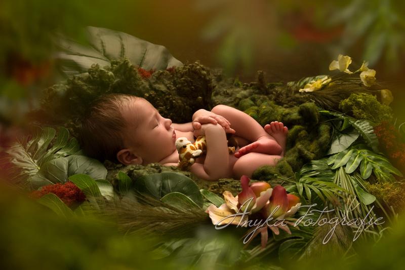 Baby in jungle 43380