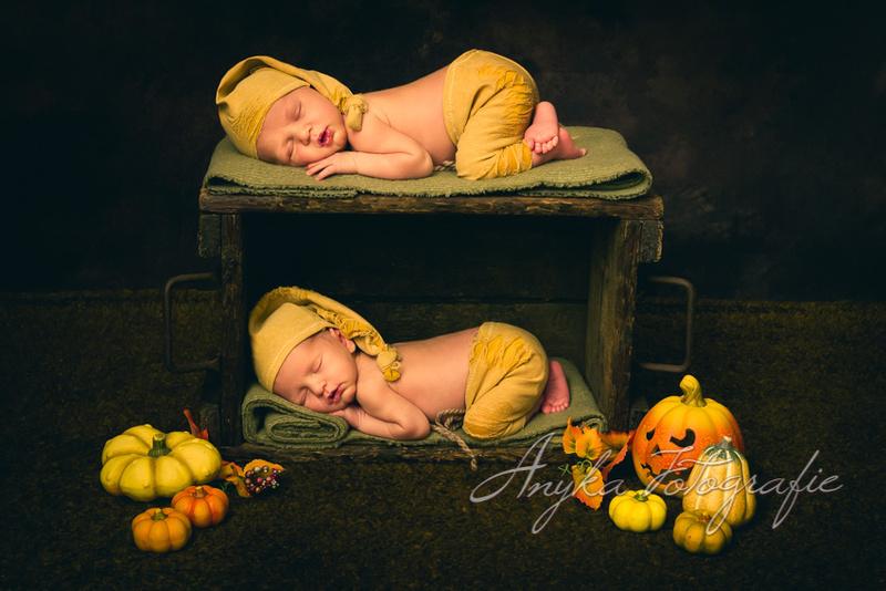 Herfst setup in houten krat met newborn tweeling baby'tjes - 02400-Edit-2
