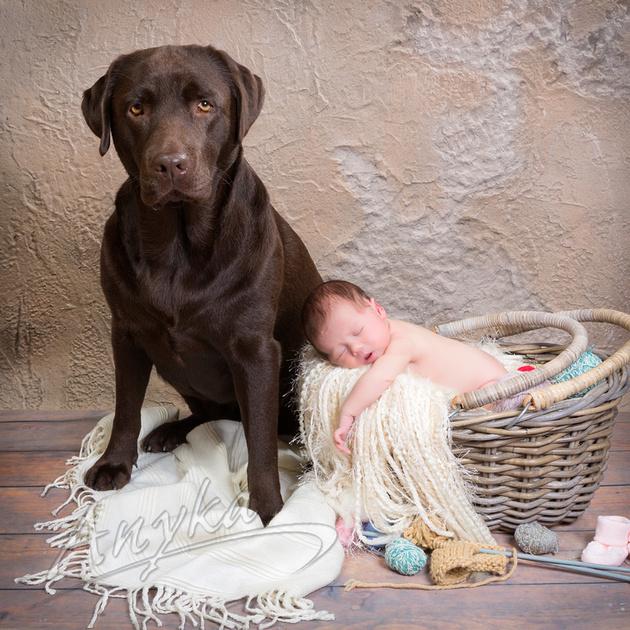 baby met hond